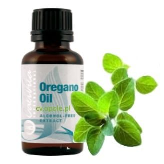 oregano_oil